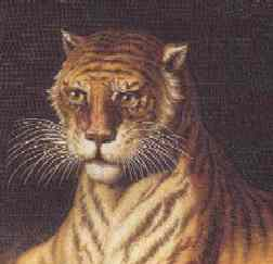 micromosaic of Tigress from cover of Micromosaics; The Gilbert Collection